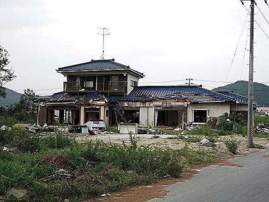 shinnsai2011111903no54