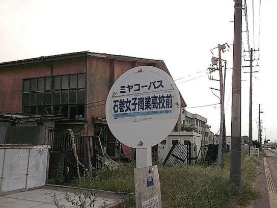 shinnsai201112004no55