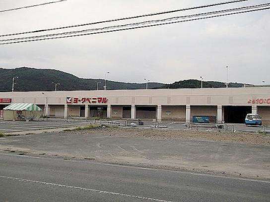 shinnsai2011112202no57