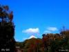 Sky-224.jpg