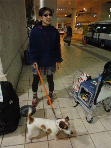 2011 沖縄空港ペイント済み