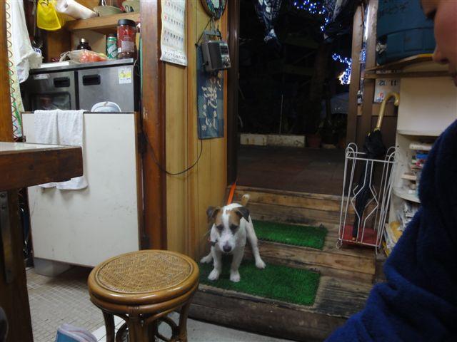 2011 沖縄 2 183