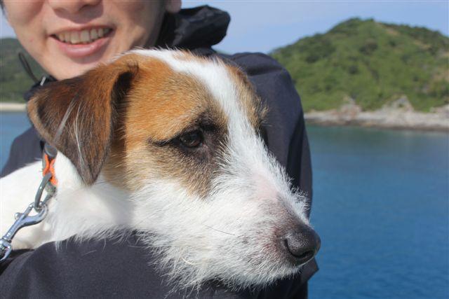 2011 沖縄 083