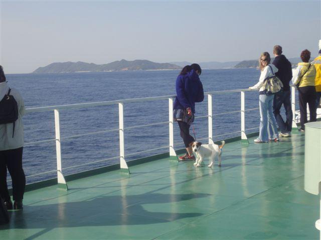 2011 沖縄 2 221