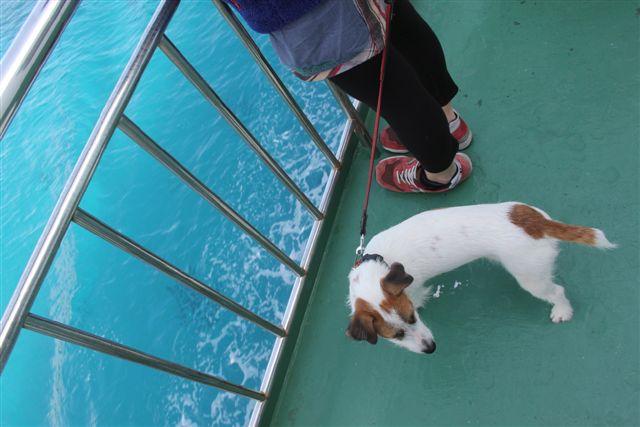 2011 沖縄 061
