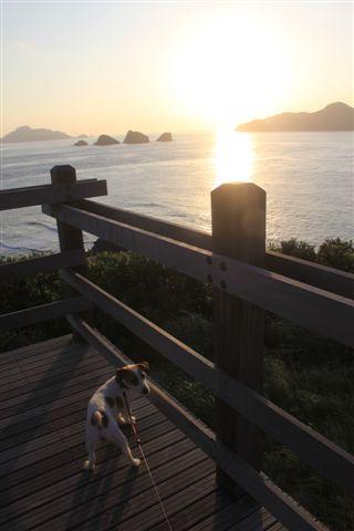 2011 沖縄 184