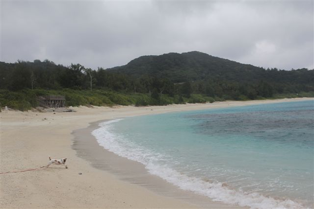 2011 沖縄 400