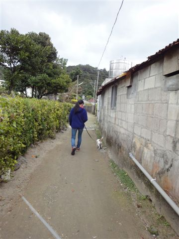 2011 沖縄 2 330