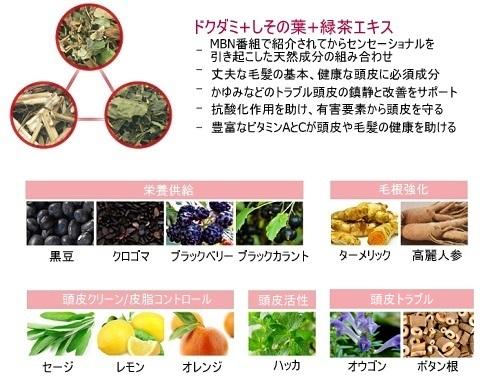 ISOI_アイソイ_頭皮ケア_ドクタールーツ (7)