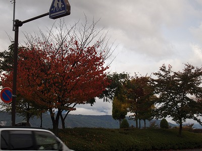 2011.10.21  (11)