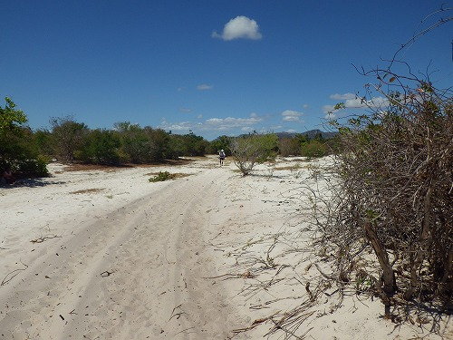 Madagascar (79)