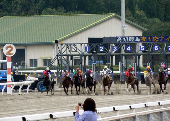 高知競馬5