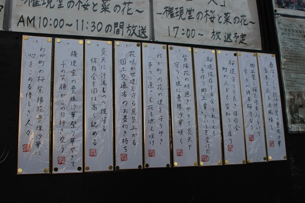権現堂:川柳