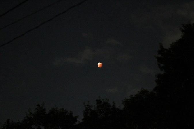 2014-10-08 皆既月食2