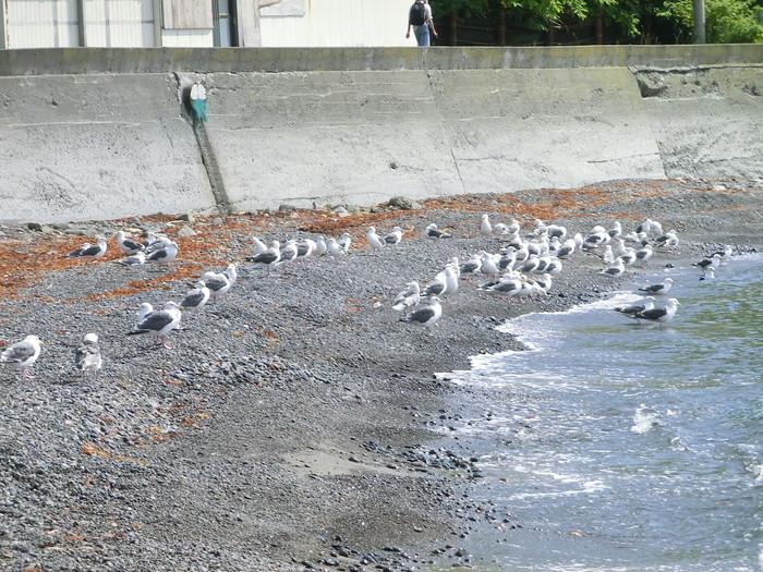 20120807桃岩 (3)