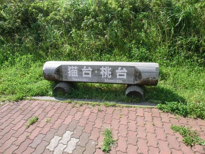 20120807桃岩 (18)