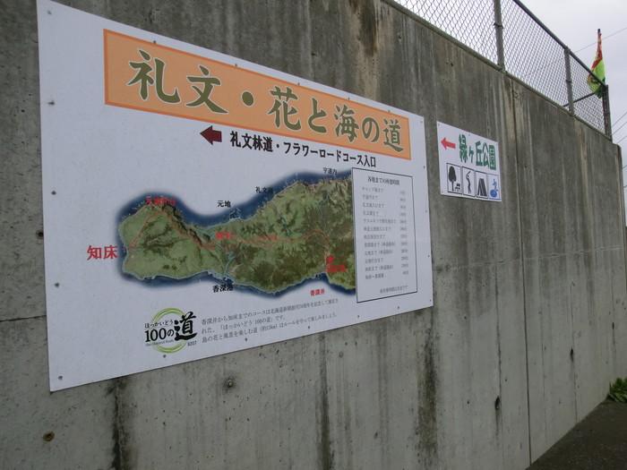礼文林道 (5)