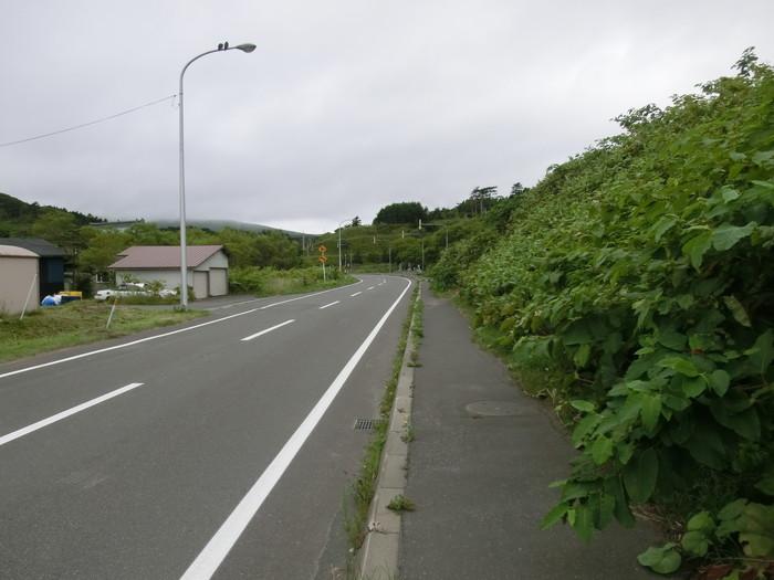 礼文林道 (6)