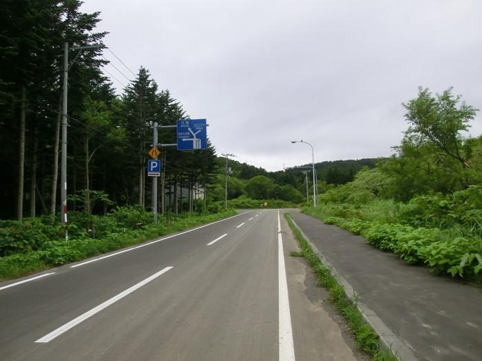 礼文林道 (9)