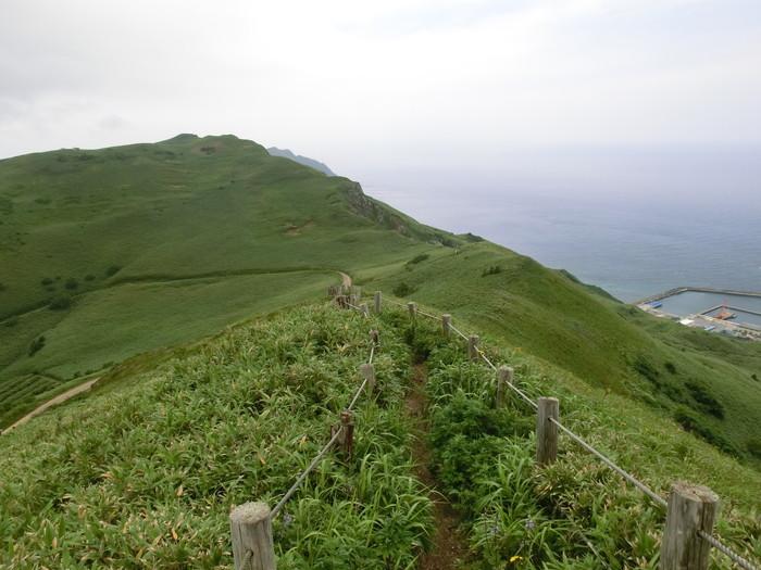 礼文林道 (83)