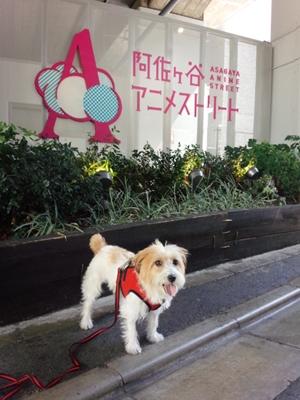 阿佐ヶ谷アニメストリートにて