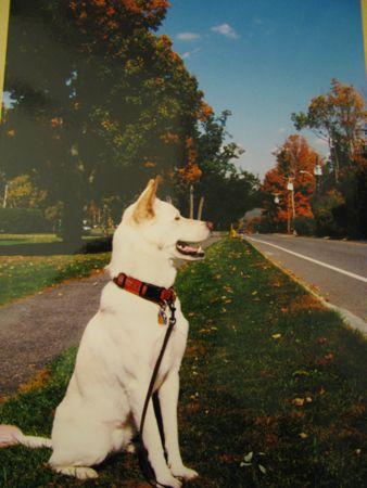 fall2001.jpg