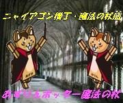 1_20111019154812.jpg