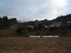 2013-12-01-017.jpg