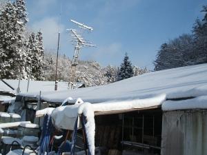 2013-12-15-018.jpg