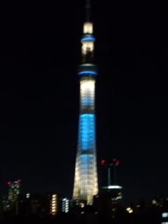 東京ホタル01