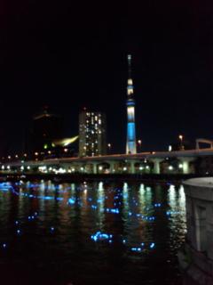 東京ホタル05