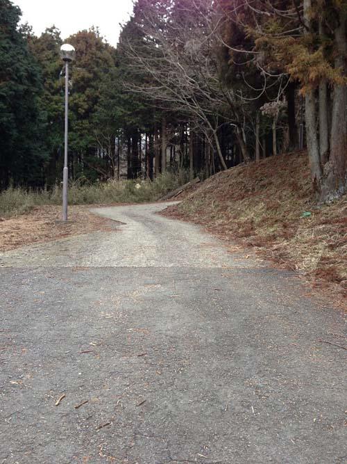 oosawasen023.jpg