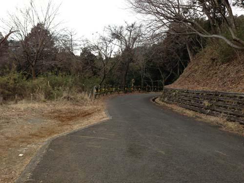 yakushi010.jpg