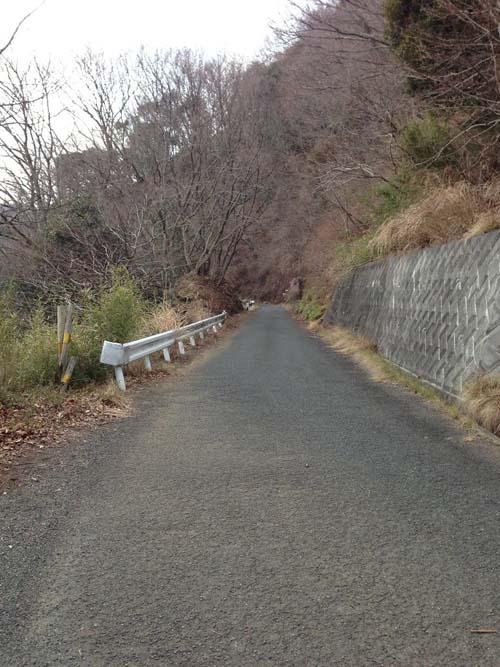 yakushi015.jpg