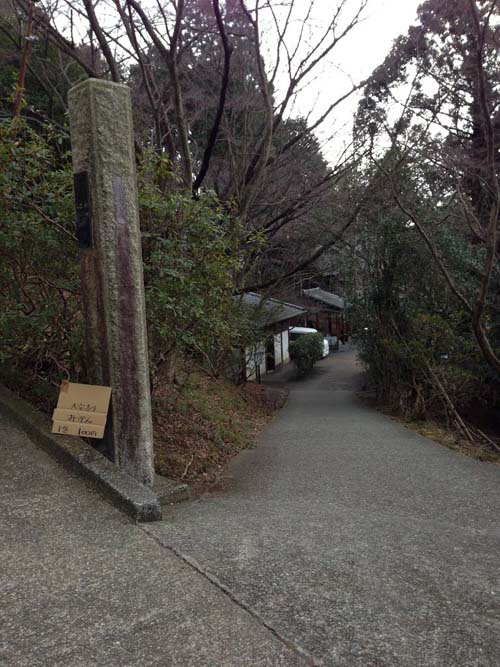 yakushi020.jpg