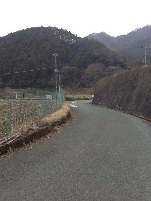 yakushi022.jpg