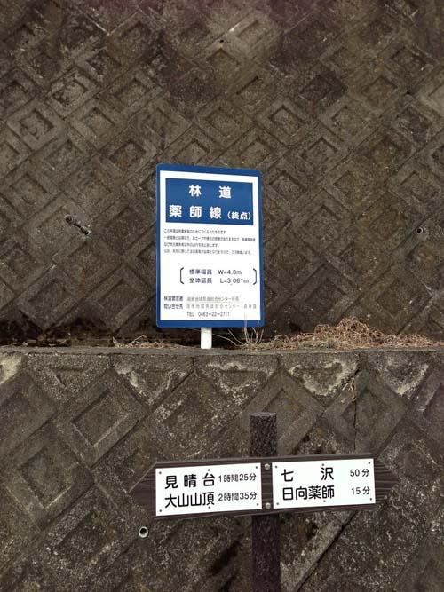 yakushi023.jpg