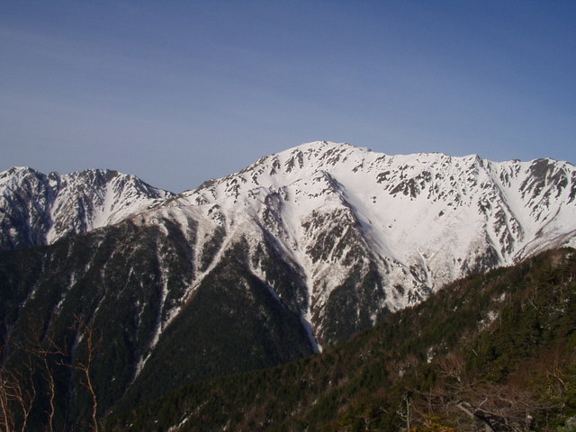 南アルプス-北岳(夜叉神・池山吊尾根)H16・5・1~5・3③ 014