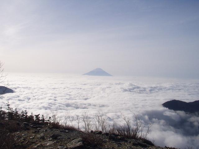 南アルプス-北岳(夜叉神・池山吊尾根)H16・5・1~5・3③ 013