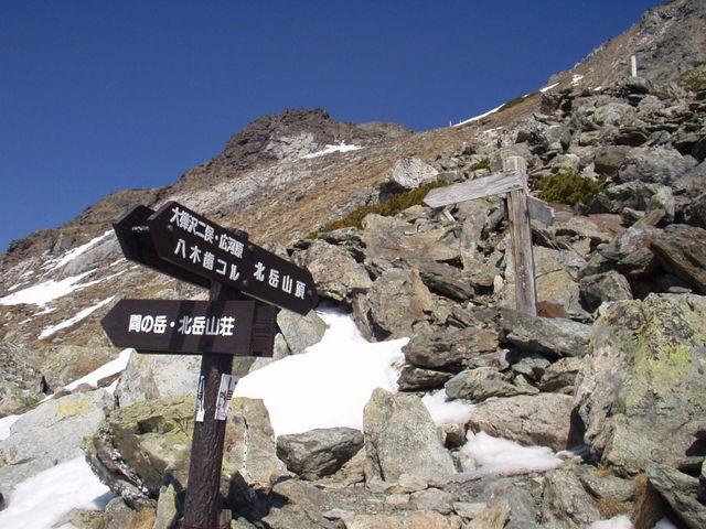 南アルプス-北岳(夜叉神・池山吊尾根)H16・5・1~5・3③ 058