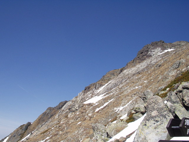 南アルプス-北岳(夜叉神・池山吊尾根)H16・5・1~5・3③ 066