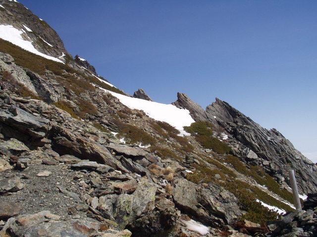 南アルプス-北岳(夜叉神・池山吊尾根)H16・5・1~5・3③ 072