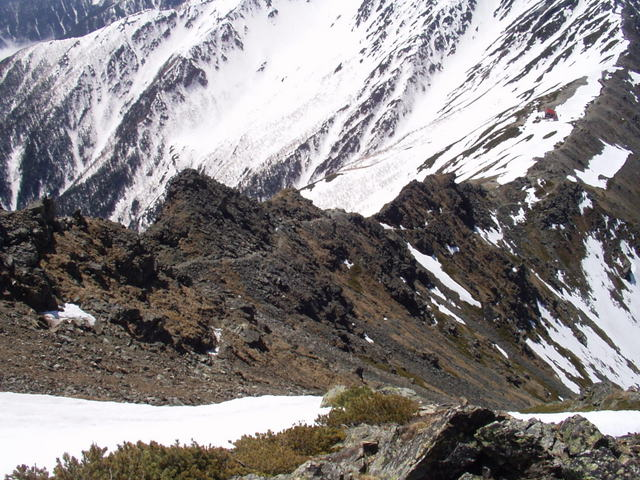 南アルプス-北岳(夜叉神・池山吊尾根)H16・5・1~5・3 019