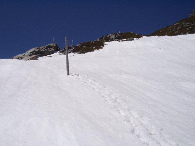 南アルプス-北岳(夜叉神・池山吊尾根)H16・5・1~5・3 025