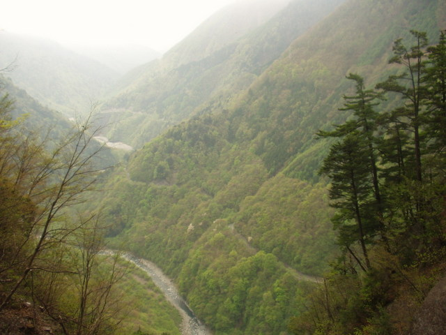 南アルプス-北岳(夜叉神・池山吊尾根)H16・5・1~5・3 035