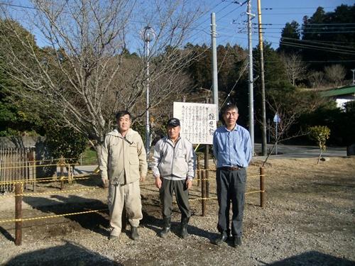 2013.1.31 鎌足桜の手入れ(柵) 027 (7)