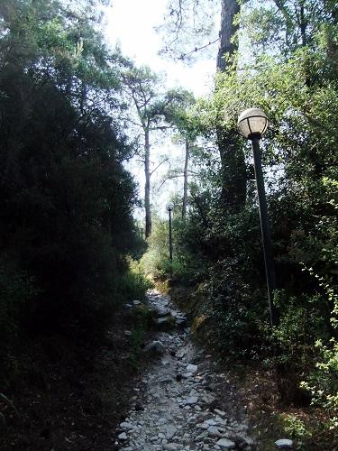 タソス_リメナスの山をさまよう (2)