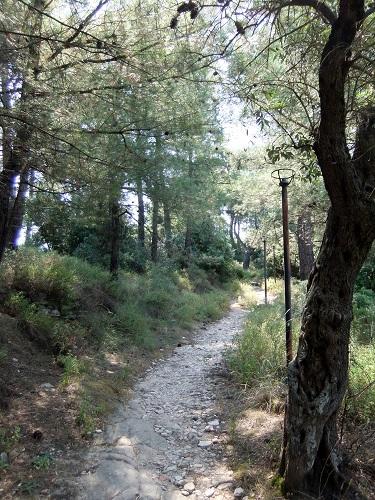 タソス_リメナスの山をさまよう (1)