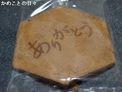 DSC_0134-kawa.jpg