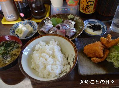 DSC_0608-sa.jpg